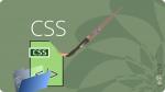 איך עורכים CSS וורדפרס